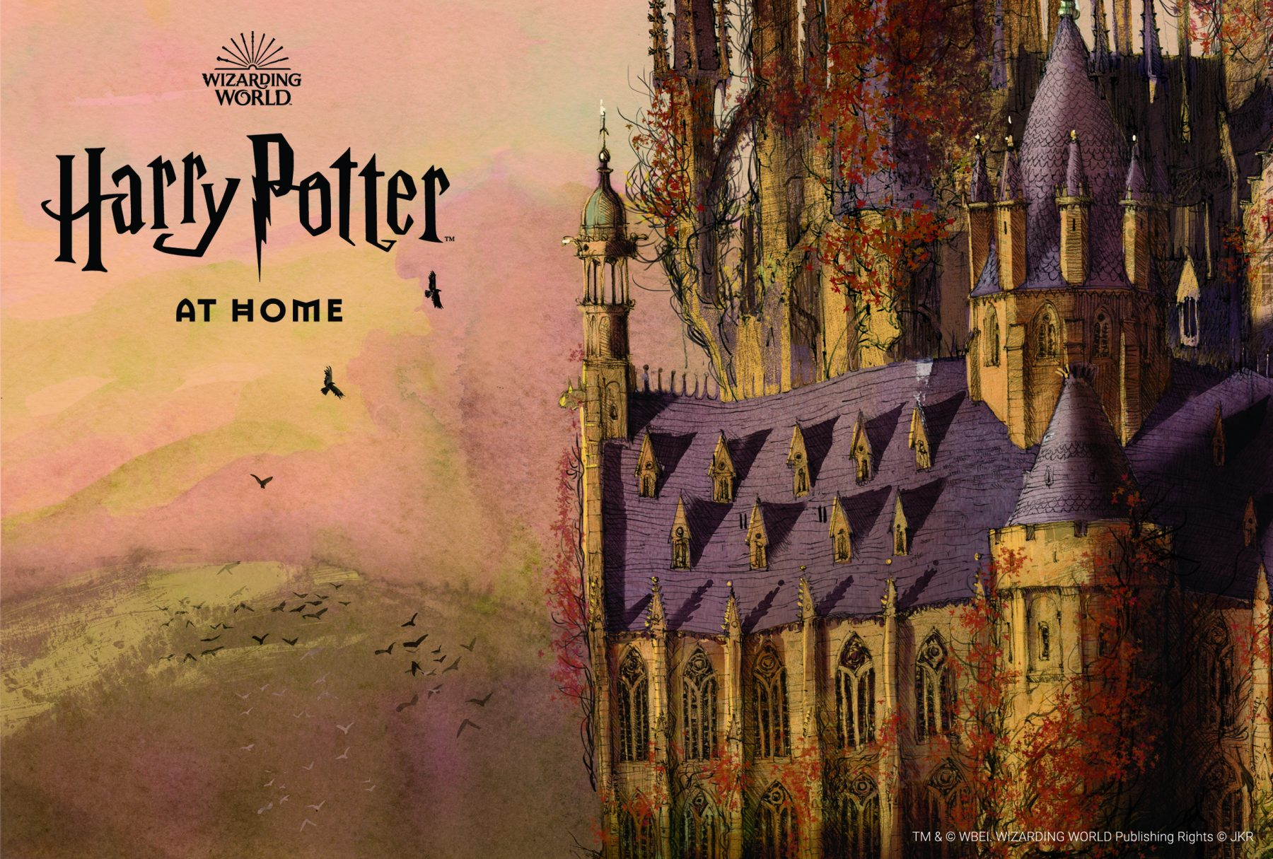 Harry Potter At Home  purple and orange castle